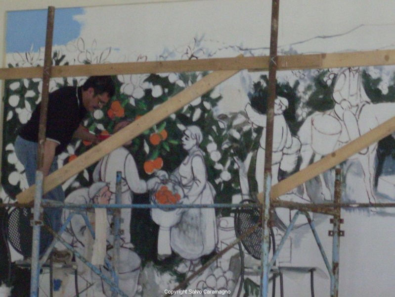 Cesano (Roma) - La raccolta delle arance