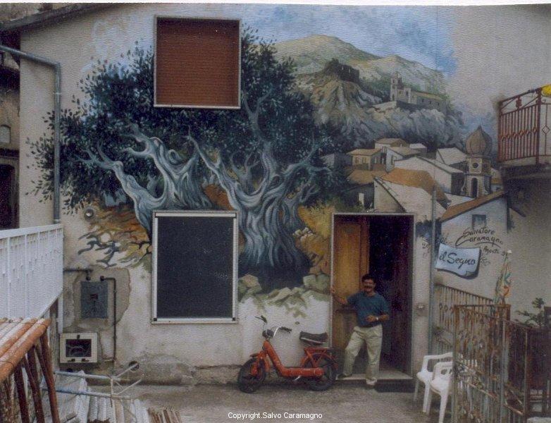 Lauria -  Il grande ulivo