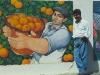 Linguaglossa (CT)-raccoglitore di arance